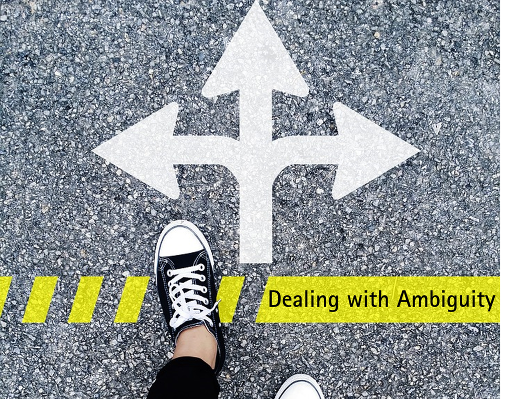 Dealing with Ambiguity - Laurenne Di Salvo - Harvest Coaching and Learning